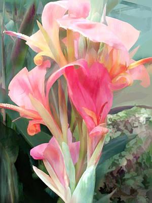 Pastel Pink Cannas Poster by Elaine Plesser