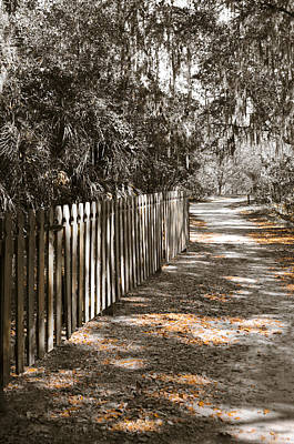 Path Along The Fence Poster by Carolyn Marshall