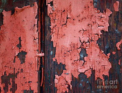 Peeling Red Paint Poster by Gwyn Newcombe