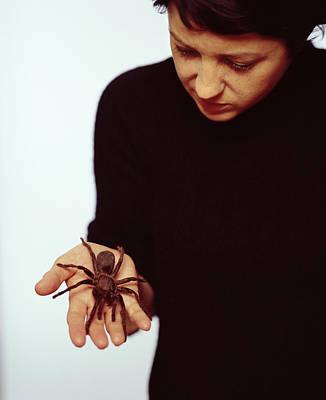 Pet Tarantula Poster by Lawrence Lawry