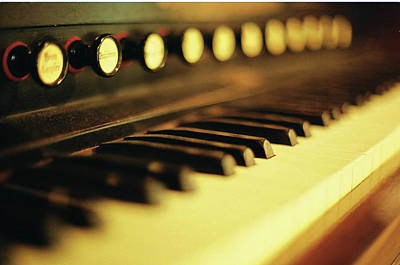 Piano Keys And Buttons Poster