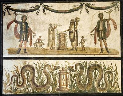 Pig Sacrifice, Roman Fresco Poster by Sheila Terry