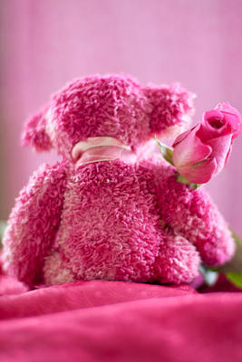 Poster featuring the photograph Pink Bear Behind Holding Pink Rose by Ethiriel  Photography