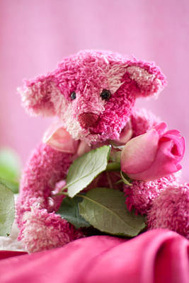 Poster featuring the photograph Pink Bear With Rose by Ethiriel  Photography