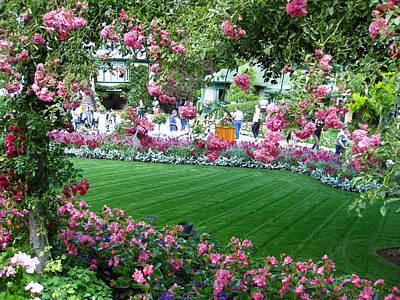 Pink Garden Poster
