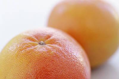 Pink Grapefruits Poster