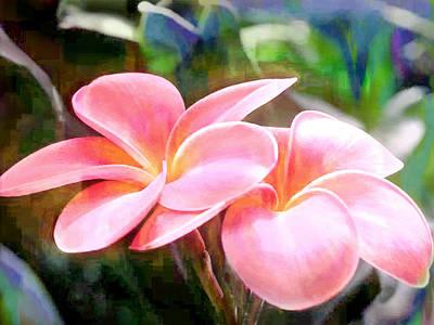 Pink Plumeria Blooms Poster by Elaine Plesser