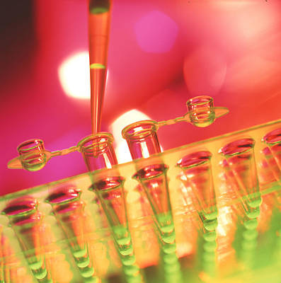 Pipetting Liquid Poster by Tek Image