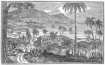 Plantation In Jamaica Poster by Granger