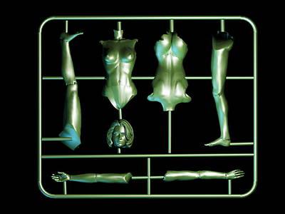 Plastic Female Body Kit Poster