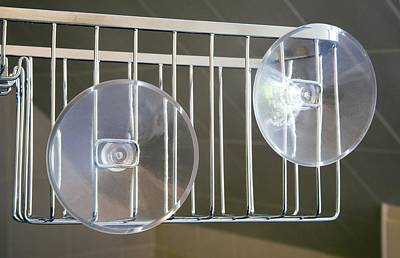 Plastic Suction Cups Poster by Sheila Terry