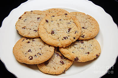 Plate Of Chocolate Chip Cookies Poster by Andee Design