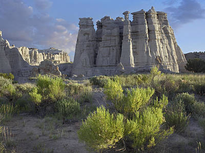 Plaza Blanca Near Abiquiu New Mexico Poster by Tim Fitzharris