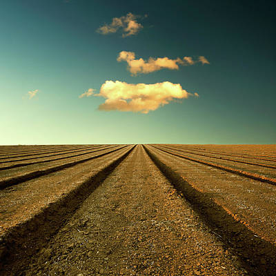 Ploughed Field And Sky Poster by Paul McGee