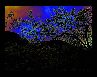 Poster featuring the photograph Plum Grove At Dusk by Susanne Still