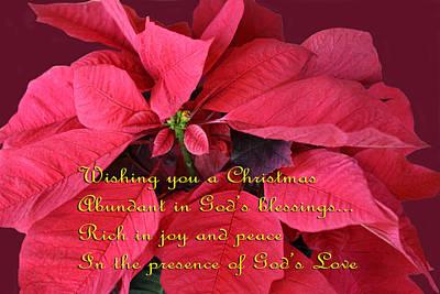 Poinsettia Christmas Card 5 Poster