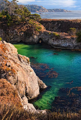 Point Lobos State Reserve California Poster