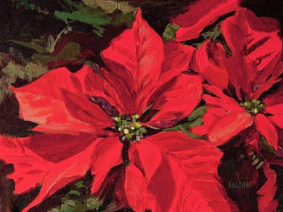 Pointsettia Flower Poster