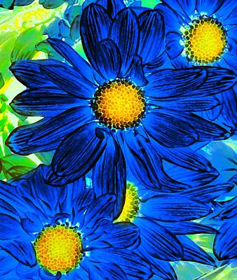 Pop Art Daisies 15 Poster by Amy Vangsgard