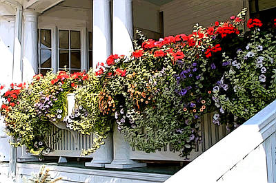Porch Flowers Poster