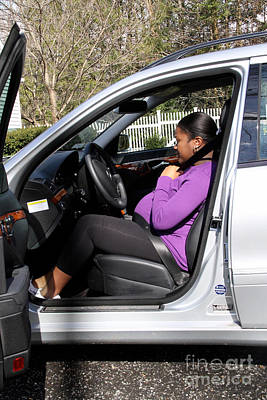 Pregnant Woman Putting On Seatbelt Poster by Photo Researchers