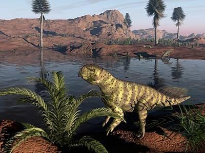 Psittacosaurus Dinosaur, Artwork Poster