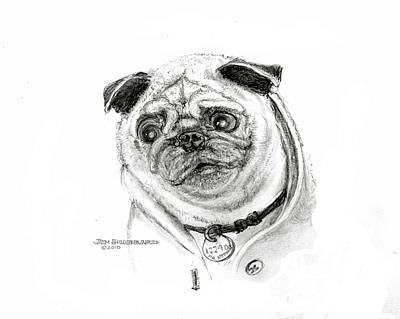 Poster featuring the drawing Pug by Jim Hubbard