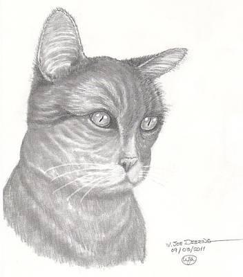 Pugnosed Cat Poster
