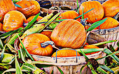 Pumpkin And Corn Combo Poster by Ms Judi