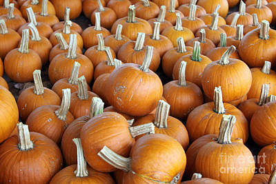 Poster featuring the photograph Pumpkins by Denise Pohl