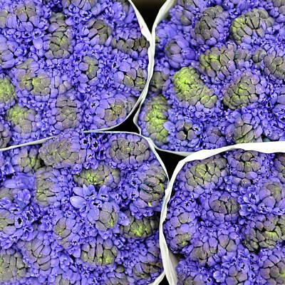 Purple Flower Bouquet At Market Poster by (c) Jean-Michel VOLAT - jmvnoos on Flickr
