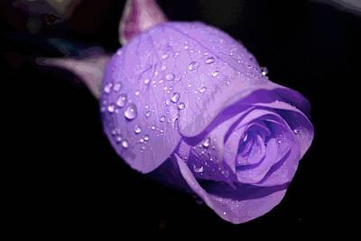 Purple Rain Drops Poster