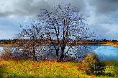 Quarry Lakes In Fremont California . 7d12636 Poster
