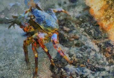Rainbow Crab Poster