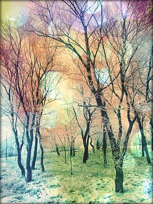 Rainbow Forest Poster by Marianna Mills