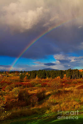 Rainbow Over Rithets Bog Poster by Louise Heusinkveld