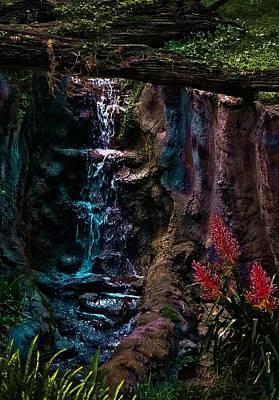 Rainforest Eden Poster