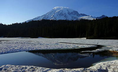 Rainier Reflected Poster by Peter Mooyman