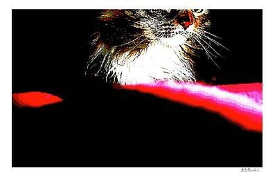 Red And Black And Cat Poster by Brian D Meredith