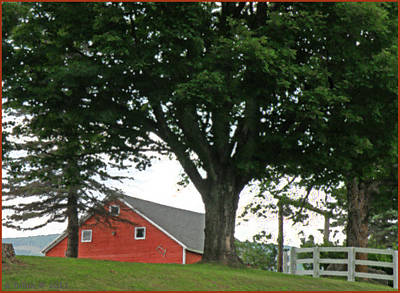 Red Barn White Fence Poster