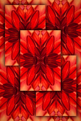 Red Dahlia-layered Reflection Poster by  Onyonet  Photo Studios