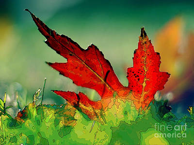Red Oak Leaf Poster