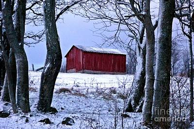 Red Shed In Winter Poster by Christian Mattison