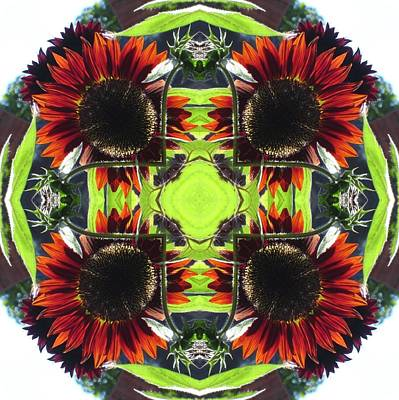 Poster featuring the digital art Red Sunflowers And Leaf by Trina Stephenson