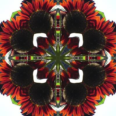 Poster featuring the digital art Red Sunflowers by Trina Stephenson