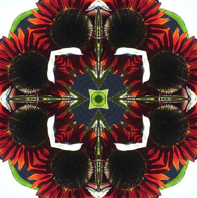 Poster featuring the digital art Red Sunflowers With Blue Center by Trina Stephenson