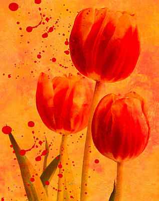 Red Tulips Poster by James Bethanis