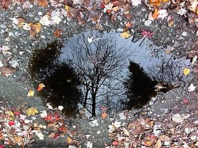 Reflecting Autumn Poster by Elijah Brook