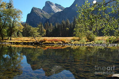 Poster featuring the photograph Reflections In Autumn by Johanne Peale