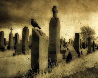 Rest Blackbird Poster